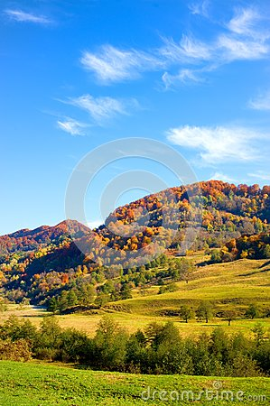 Autumn landscape with colorful forest