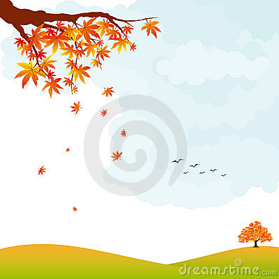 Autumn landscape colorful maple leaves and tree