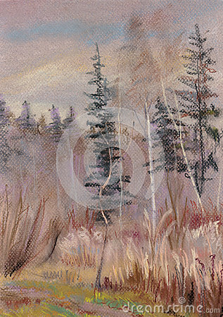 Autumn landscape with fur-trees and a birch