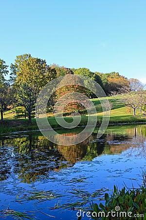 Free Autumn Landscape Lake Water Reflections Gardens Stock Photos - 21523753