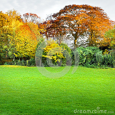 Autumn landscape with a lawn in the foreground.
