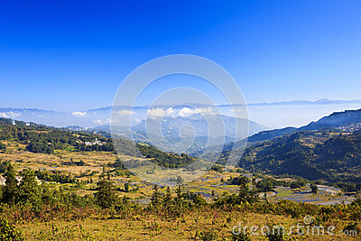 Autumn landscape at rice terraces