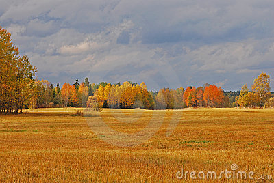 Autumn landscape in Sweden