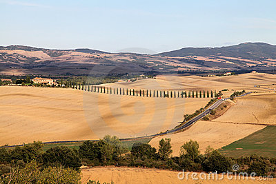 Autumn landscape of Tuscany, cypresses and fields