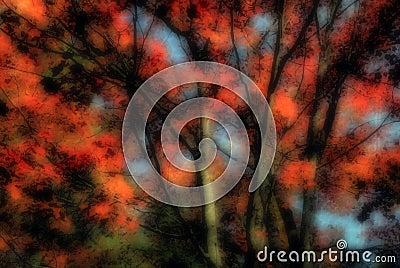 Autumn Layered Abstract
