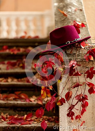 Free Autumn Leaf Fall. Red And Yellow Leaves On The Destroyed Old Sto Royalty Free Stock Photos - 129502368