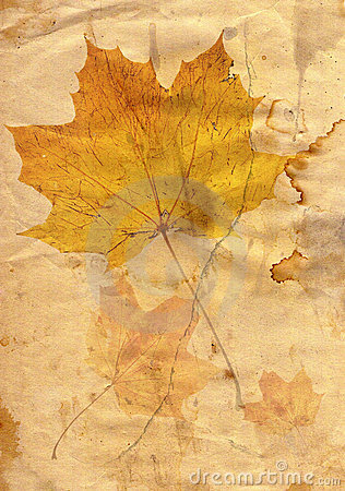 Autumn leaf in grunge style