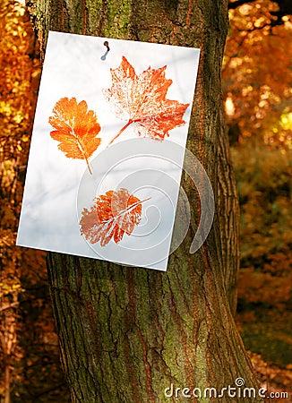 Autumn Leaf Prints
