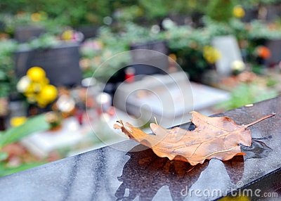 Autumn leaf and tombs with flowers at cemetery