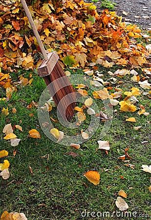 Autumn leafs broom