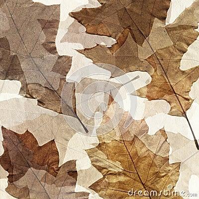Autumn leafs grunge background