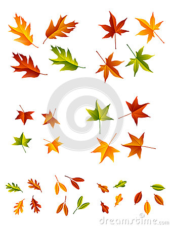 Free Autumn Leaves Stock Photos - 26228413