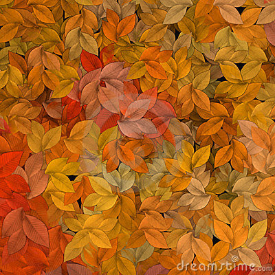 Free Autumn Leaves Royalty Free Stock Photo - 732805