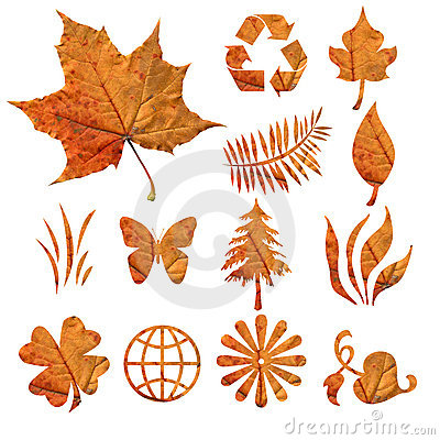 Free Autumn Leaves Royalty Free Stock Images - 9297299