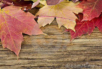 Autumn leaves background on old wood floor