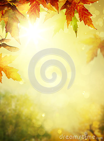Free Autumn Leaves Backgrounds Stock Photography - 44347402