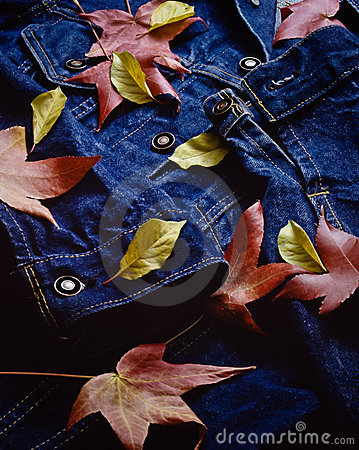 Autumn leaves blanket a blue jean jacket