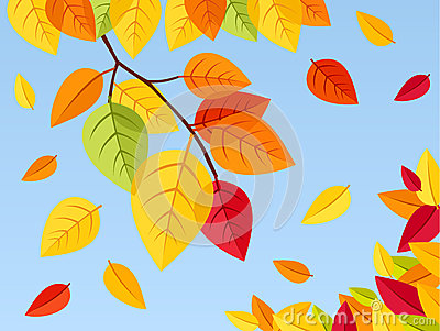 Autumn leaves on a blue sky background. Vector ill