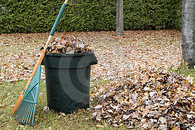 Autumn leaves in a garbage can - Horizontal