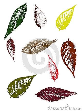 Free Autumn Leaves II Stock Photo - 3217490