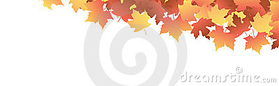 Autumn Leaves [maple] header