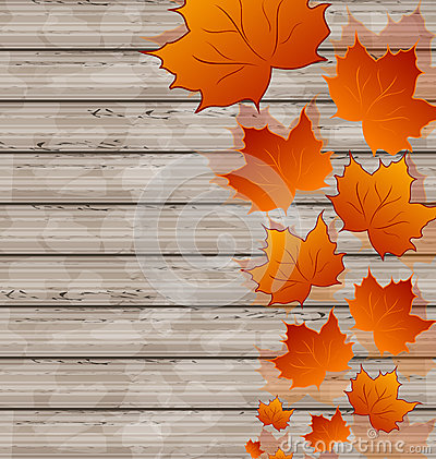 Autumn leaves maple on wooden texture