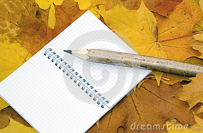Autumn leaves, notebook and pen