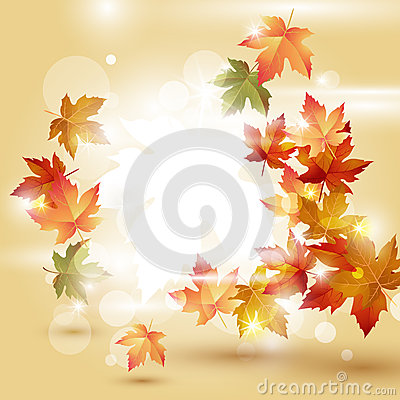 Autumn leaves over bright background
