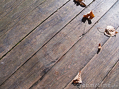 Autumn leaves over wooden boards floor
