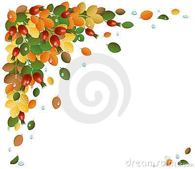 Autumn leaves with rose-hips, background