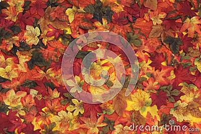 Autumn leaves in season