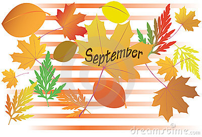 Autumn leaves - September - vector