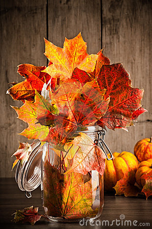 Autumn Leaves Still Life