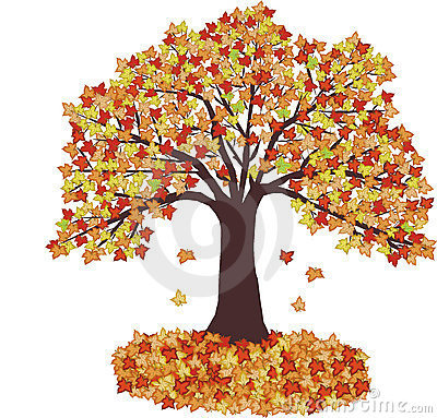 Autumn Leaves and tree - vector