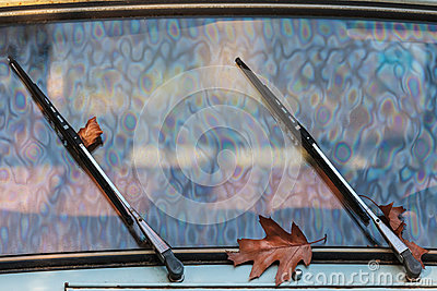 Autumn leaves between the wipers of a classic car