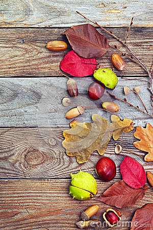 Free Autumn Leaves With Acorn, Twig, Chestnut Over Wooden Background Stock Images - 45107284