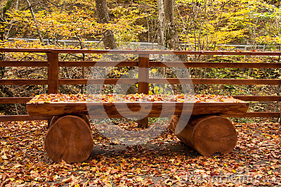 fallen leaves on handmade wooden furniture in autumn in the forest autumn furniture