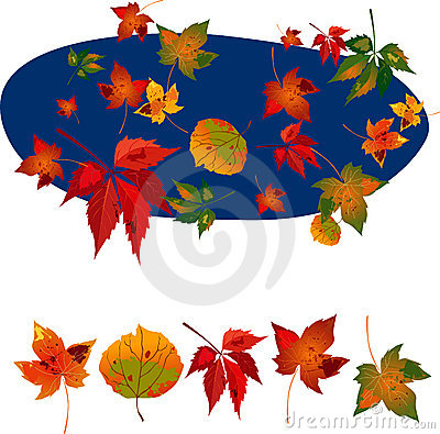 Free Autumn Leaves1 Royalty Free Stock Photography - 3034267