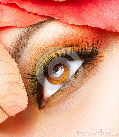 Autumn Makeup Closeup