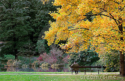 Autumn man on bench