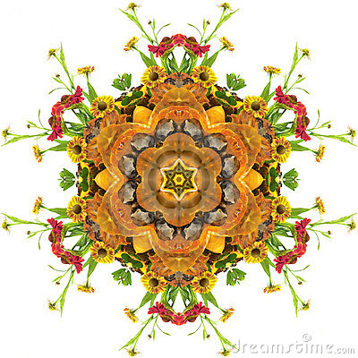 Free Autumn Mandala Stock Image - 290331