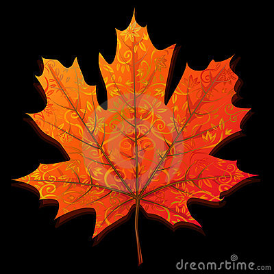 Free Autumn Maple Leaf Royalty Free Stock Images - 7838579
