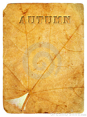 Autumn maple leaf. Old postcard.