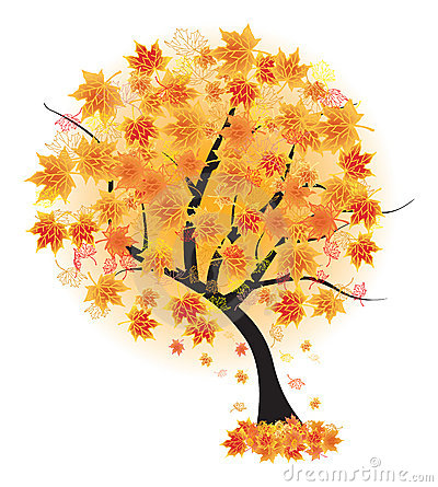 Autumn maple tree leaf fall. Vector illustr