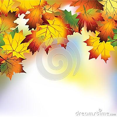 Autumn mesh