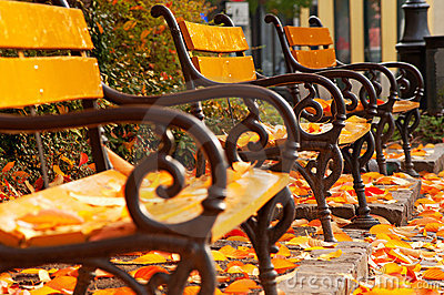 Autumn mood with benches