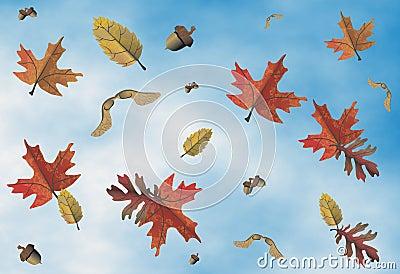 Autumn motive , seasons