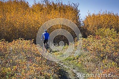 Autumn mountain biking