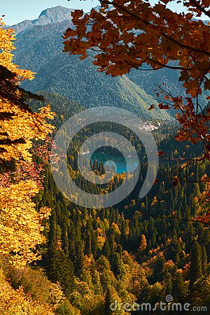 Free Autumn Mountain Landscape With Yellow, Orange And Red Foliage Trees And Green Pines. Small Ritsla Lake View Royalty Free Stock Photos - 129063838