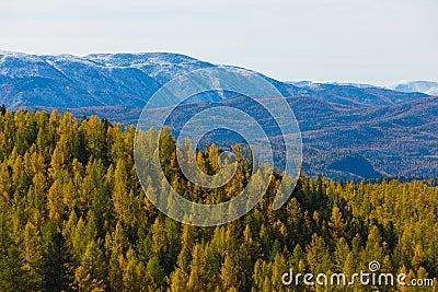 Autumn in mountains
